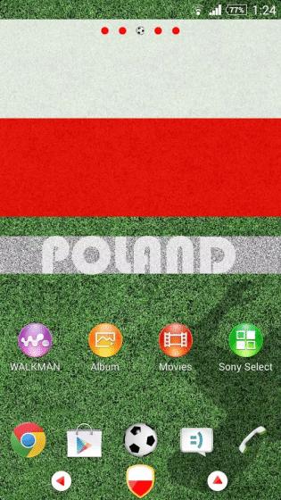Poland_1_result-315x560